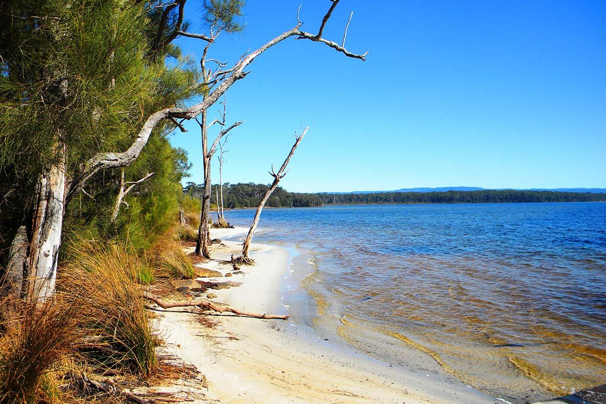 things-to-do-swan-lake-nsw-08